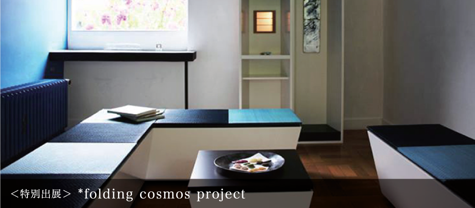 folding cosmos project